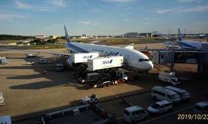 ANAの成田便でマレーシアに戻って来るのは難しい