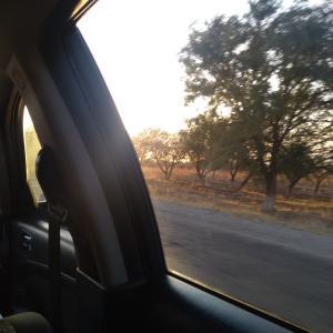 【ウズベキスタンへの旅⑬】サマルカンドからタシケントへGOGO4時間ドライブ♪