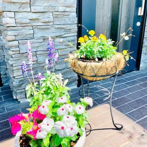 ★プランターを夏の花に植え替えました♪