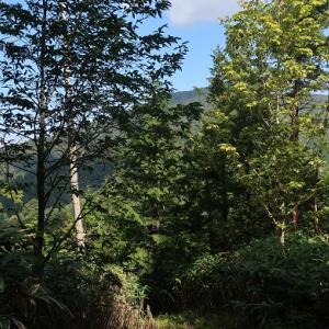 79.船山(1,479m)