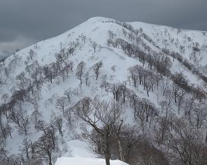 19.高丸(1,316m)