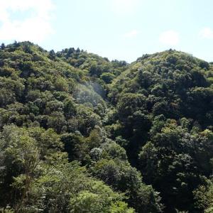 続75.三森山(1,101m)