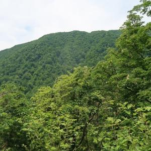キラズ山(1,188m)