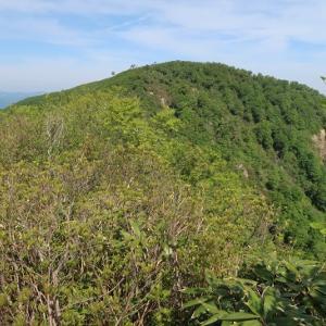 続130.六谷山(ろくたんやま:1,398m)