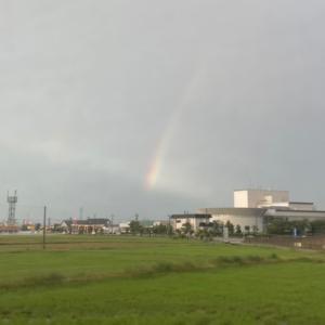 虹だ!そして龍も!?