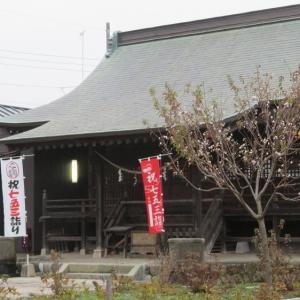 桑都と鮎、日吉八王子神社・・・Vol.2062