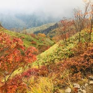 北ア 焼岳登山 紅葉に取り憑かれた