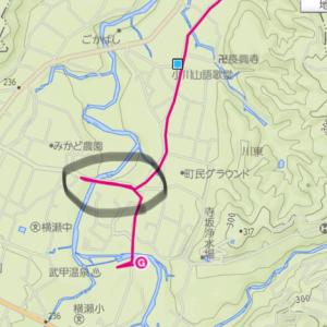 飯能アルプス奥武蔵丸山トレイルラン【7】ゴールまで  情けなくてどう受け止めて良いかわからなかった。