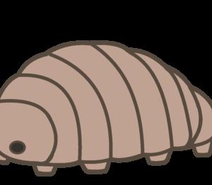 クマムシ|最強生物はハイブリッドDNAの持ち主だった