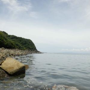 素潜り釣り採集リベンジ