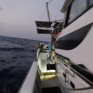 深海魚採集