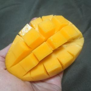 【情報】「日本で台湾果物を食べる」台湾ブームが来てます。