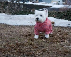 今日も寒かったよ!