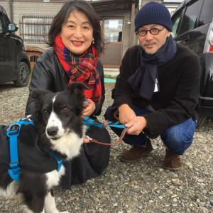 卒業犬のガーティ(旧:サツキ)ちゃんが遊びにきてくれました〓