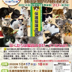 ご予約できます 10/17・18 札幌市共催 保護猫譲渡会開催☆★