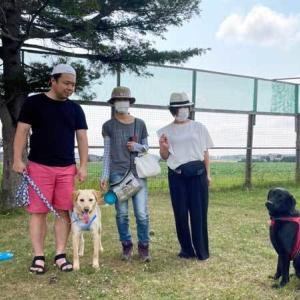卒業犬のアロちゃん(旧:衛)とアンジーちゃんが遊びに来てくれました〓