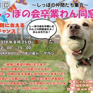 ★しっぽ卒業わん集まれ~~!!8/25同窓会開催♪