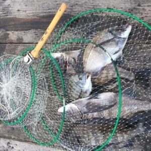 日本海から快釣の便り
