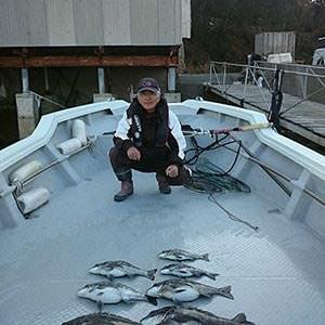 川西会長牡蠣釣りで好釣果!