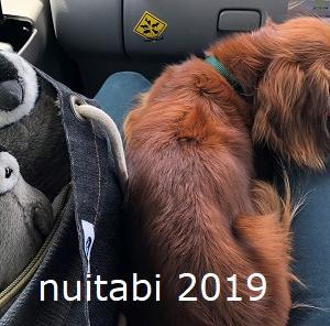 犬連れ@キャンピングカーで北海道旅行16  犬連れで回れる富良野の観光地はどこ?