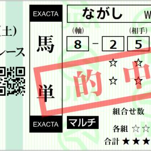 日曜阪神11R 六甲S 予想