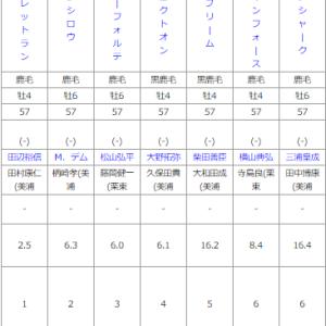 中山9R 安房特別 予想~阪神12Rもこの後予想します!~