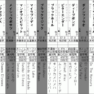 第87回日本ダービー 全頭分析(後編)