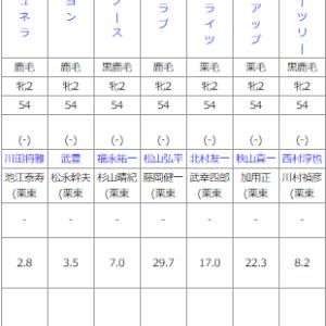 土曜阪神5R メイクデビュー阪神 予想 ~重馬場でも強いものは強い…~