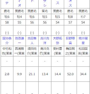 日曜函館11R  マリーンS予想