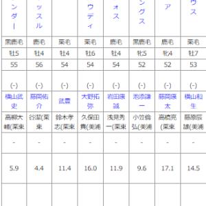 日曜札幌11R 大雪ハンデキャップ 予想