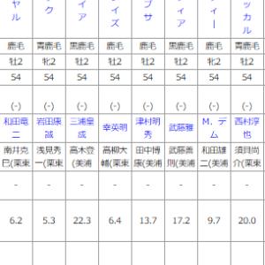 土曜新潟6R メイクデビュー新潟 予想