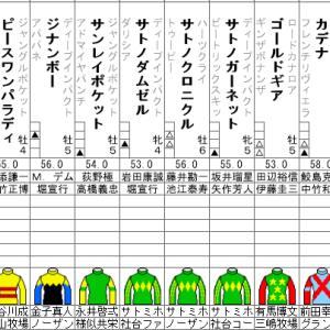 新潟記念 2020 出走全頭分析 土曜日の札幌2歳Sはこちらのブログで予想!