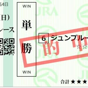 日曜中山11R ラジオ日本賞 予想