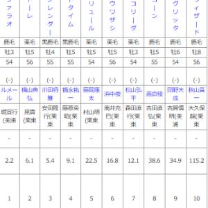 土曜中京11R シリウスS 予想 ~中京ダ1900mの特徴もおさらいします~
