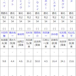 日曜京都4R メイクデビュー京都(牝) 予想