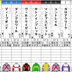 菊花賞 2020 出走全頭分析(1/2)