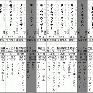チャンピオンズカップ 2020 出走全頭分析(2/2)