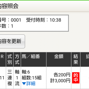 土曜中京11R 京都新聞杯 予想