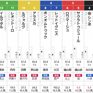 日曜函館11R 五稜郭S 予想