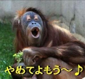 【タロット】永井先生との面談でした。