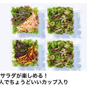 楽天のオーガニック野菜