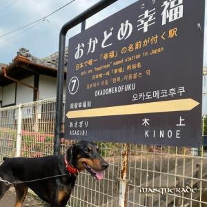 【ニッキ】幸福駅に散歩