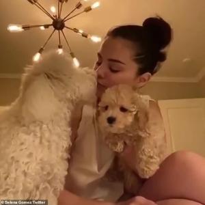 【キスしてラブラブ…!?】セレーナ・ゴメスが新しい愛犬を紹介!Selena Gomez introduces her new puppy