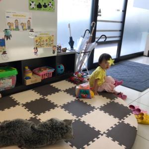 2歳1ヶ月のコミュ力ある娘、4歳兄を超える