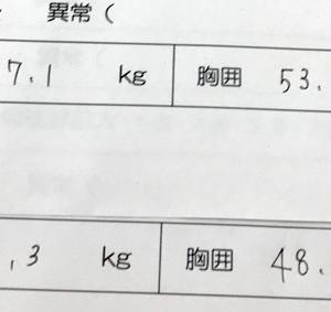 私の自転車デビューと兄妹間の頭のデカさ(格の違い)