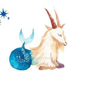 山羊座の満月を迎えました【6/25の星読み】