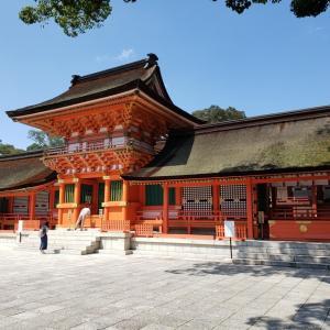 秦王国の八幡神は大和朝廷により秦氏の神から日本の神に変えられた。