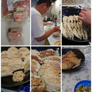 コロナ69-2 パルのせいで2人前の皿うどんを4人で食べることに 餃子を作ってくれたよ!