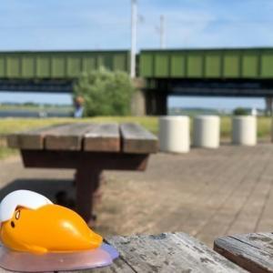 久しぶりに遠賀川釣行について行ってみました。