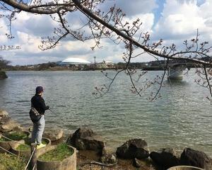 バス釣りin駕与丁公園(福岡県粕屋郡) 本日の釣果2017.04.02